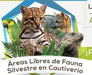 Este Próximo 31 De Agosto Habrá Declaratoria De áreas Libres De Fauna Silvestre