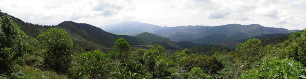 Reserva Guapante en San Antonio de Prado
