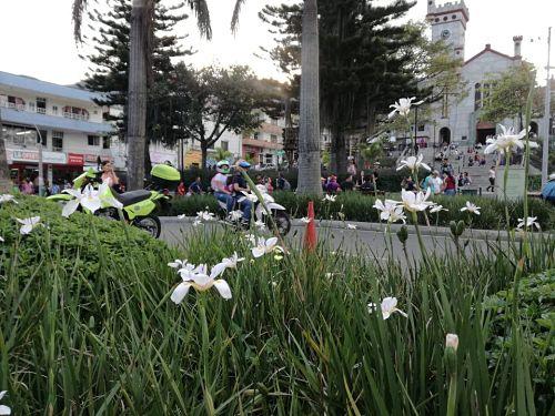 Parque San Antonio de Prado 1