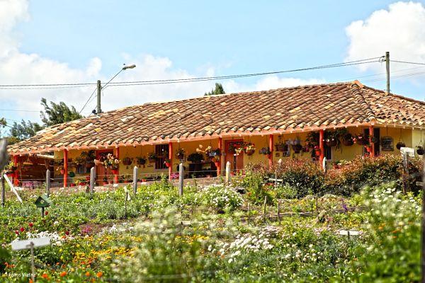 Alcaldía de Medellín, apoya al sector turístico con 600 millones de pesos