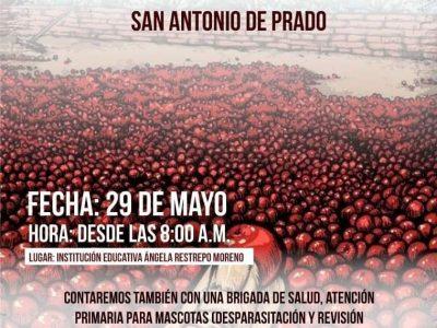 """""""Colectivo Del Sur Al Sur, Una Apuesta Juvenil Por San Antonio De Prado"""""""