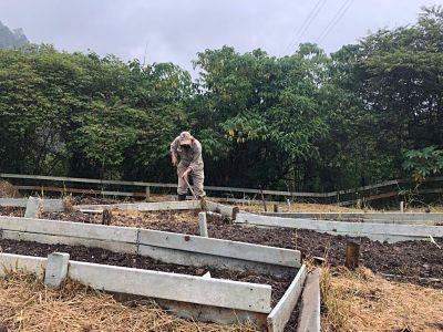 En San Antonio De Prado 200 Familias Se Beneficiarán Con La Segunda Granja De La Ciudad Para Preservar Semillas Criollas