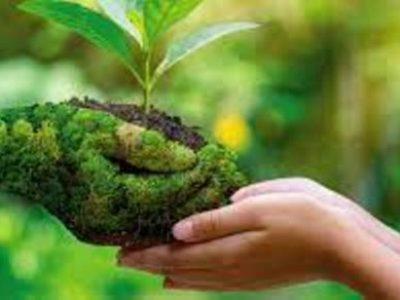 Con La Cabeza En La Tierra Para El Desarrollo Sostenible.