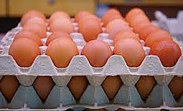 En 3 Meses, El Precio Del Huevo Ha Aumentado En Un 45%