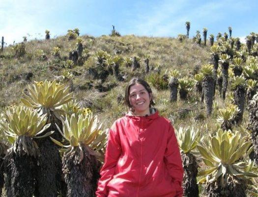 Yamile Serna Común Y Silvestre