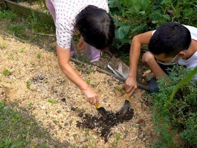 Fortalecimiento Para Proyectos De Seguridad Alimentaria Para Los Jóvenes En Medellín