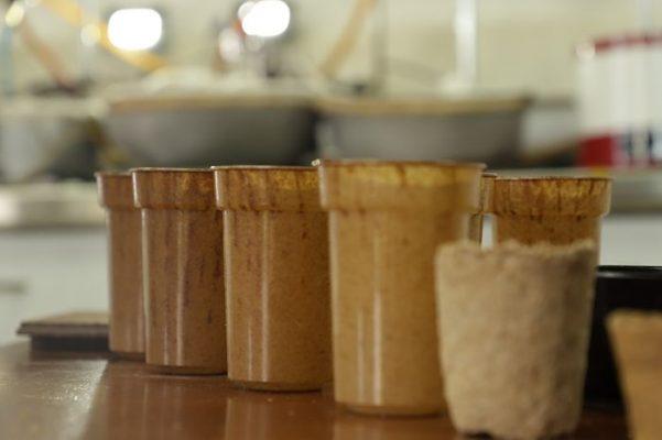 Vaso Biodegradable Con Residuos De Café