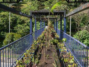 La adecuación de puentes ecológicos hace crecer a Medellín como Ecociudad
